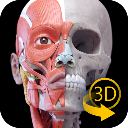 Anatomy 3D Atlas - Human Anatomy Apps